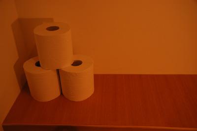 高円寺の家・WC